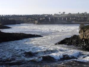 Reversing river