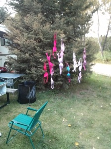 The BRA tree. The ladies hung them up to dry after a river run.