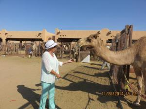 Gail and her favorite camel .