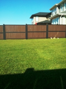 Fence all done !