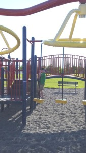 One of our many playgrounds