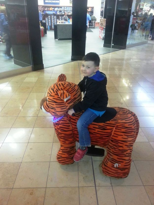 Jackson on his tiger. Best thing I have seen at a mall