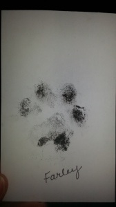 "Victoria's Pet Print "" Farley Larry Waldie"""