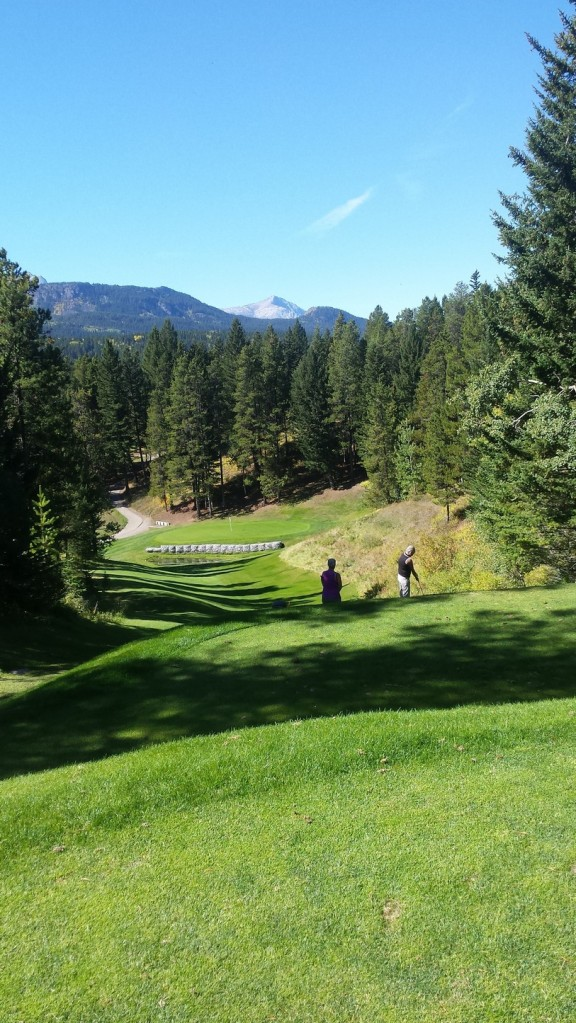 A beautiful elevated Par 3 at Crowsnest