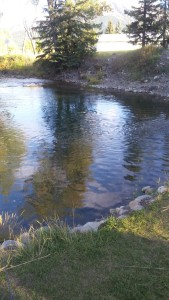 Our fishing hole