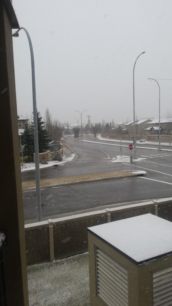 November 15th SNOW