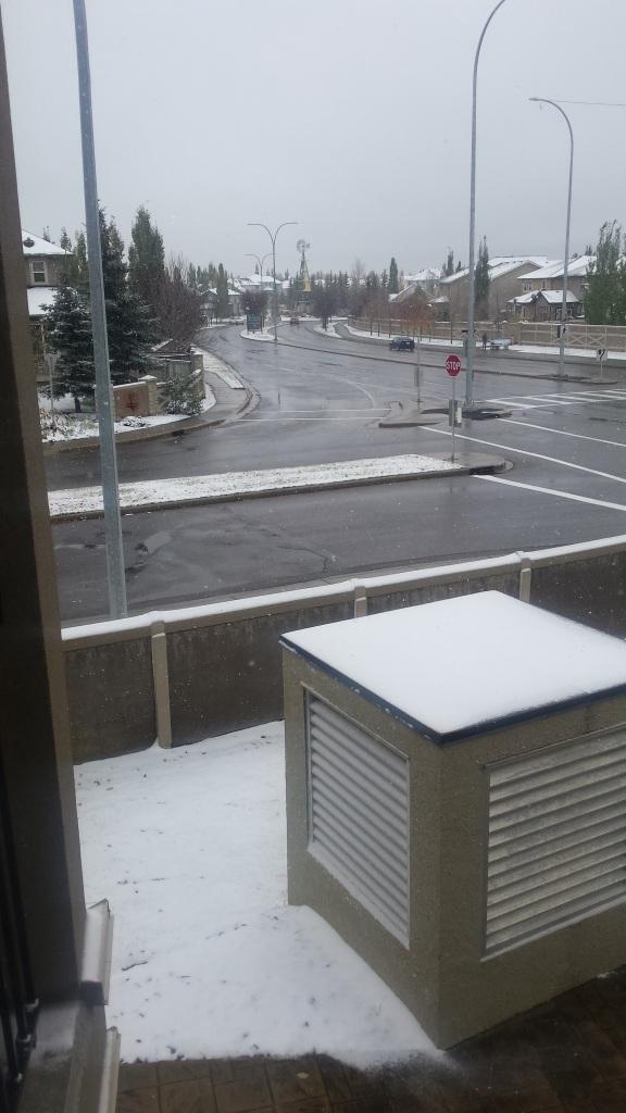 Winter !!