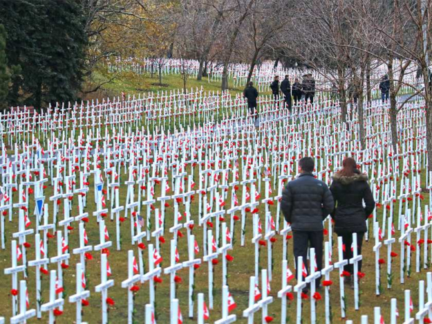 Field of Crosses in Calgary